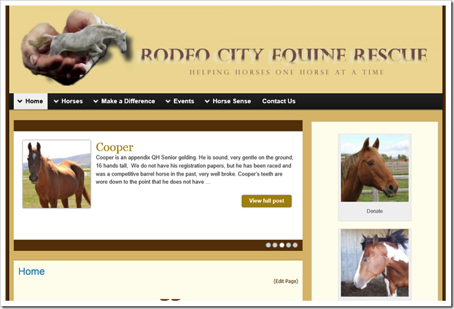 Rodeo City Equine Rescue based in Ellensburg, Washington